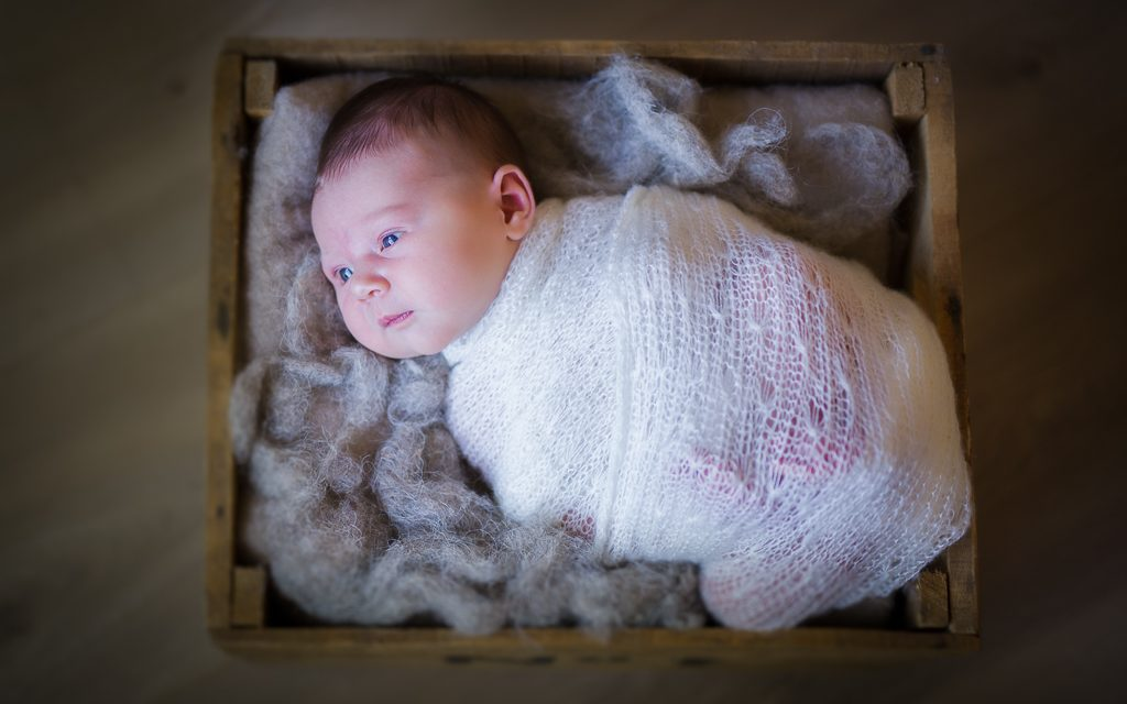 Newborn shoot Lent