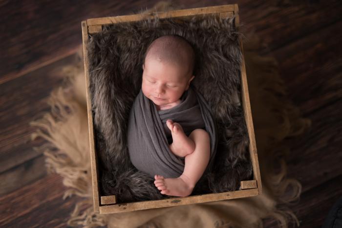 newbornshoot Wageningen