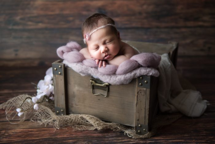 newbornshoot Boxmeer
