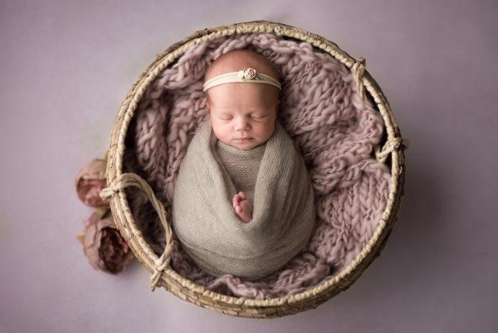 newbornshoot gelderland