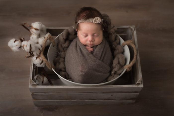 newbornshoot Druten